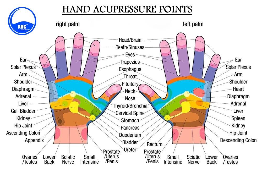 Palm Acupressure Massager (Model - ARG 797) | ARG Health ...